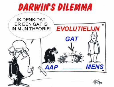 GatInTheorie
