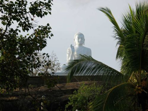Sri.Lanka.rondreis.Mihinthale.beeld